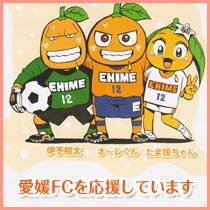 ehime_fc.jpg